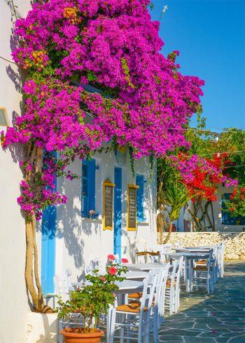 Straatje Griekenland tuinposter