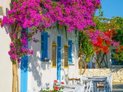 Grieks straatje bougainville tuinposter